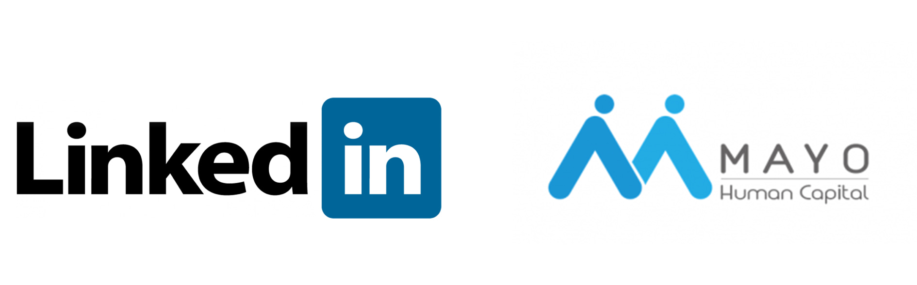 MAYO 是 LinkedIn 在台灣的服務商